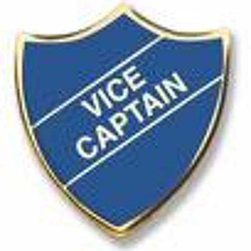 DJ Vice Captain's avatar