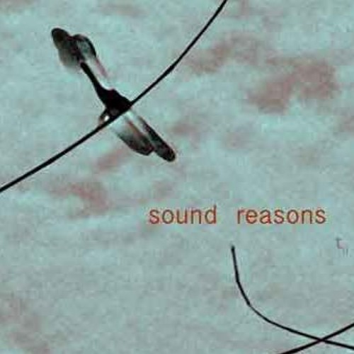sound reasons records's avatar