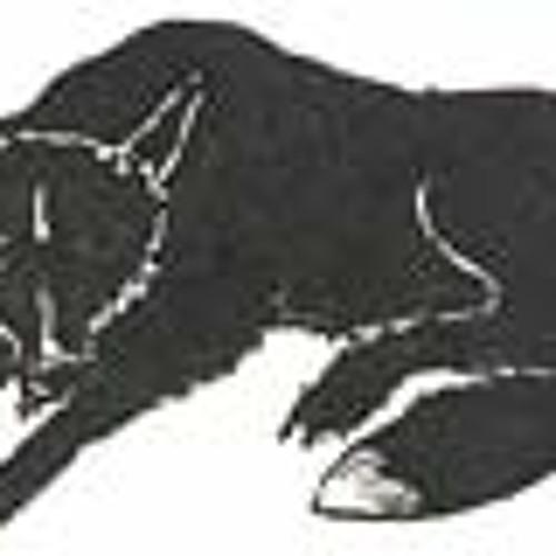 Black000Fox's avatar