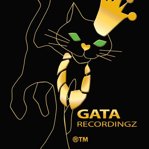 gatarecordingz's avatar