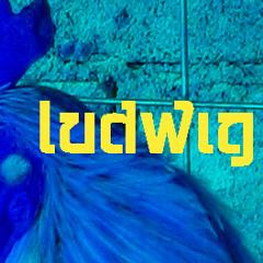 LudwigWittgeinstein