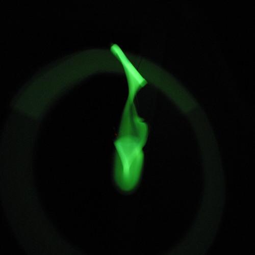 c0nsilience's avatar