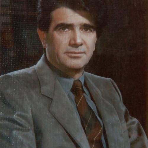 Mohsen S's avatar