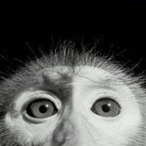 dub-munkey's avatar