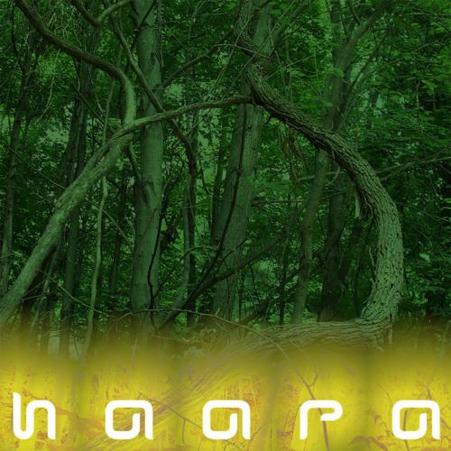 HAARA's avatar