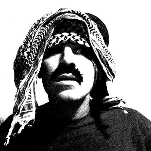 Niklas Vaggh's avatar