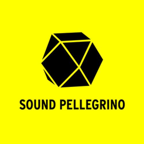 Sound Pellegrino's avatar