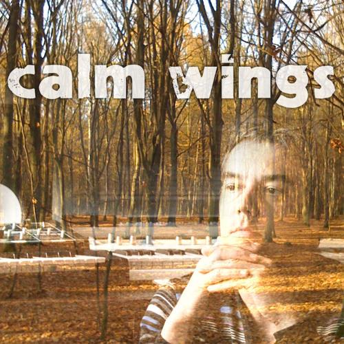 calm wings's avatar