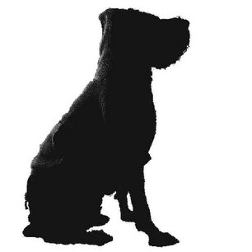 seno's avatar