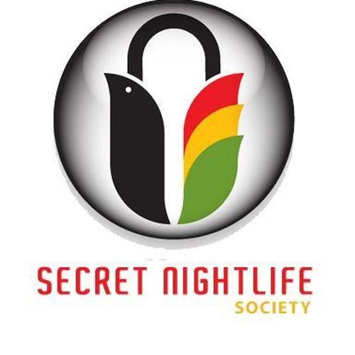 SECRETNIGHTLIFEAGENTS's avatar
