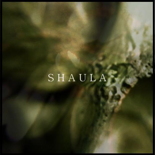 Shaula's avatar