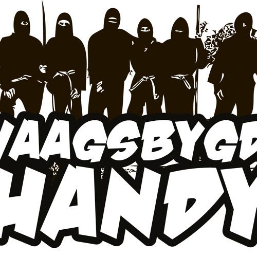 VAAGSBYGD HANDY's avatar