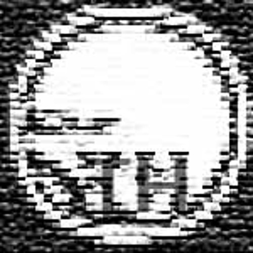 remains of tonehog's avatar