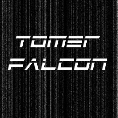 Tomer Falcon's avatar
