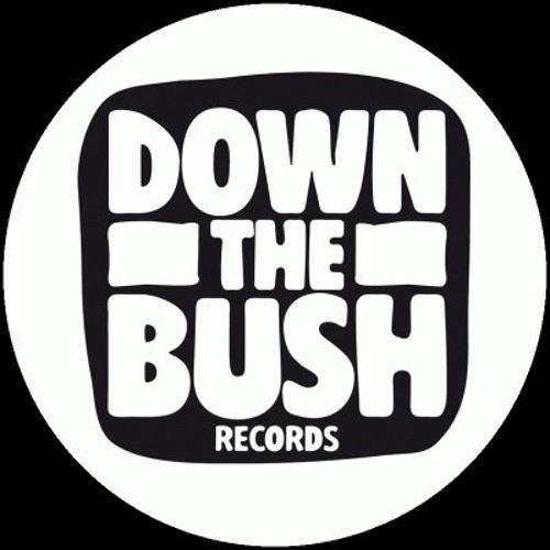 Down The Bush Records's avatar