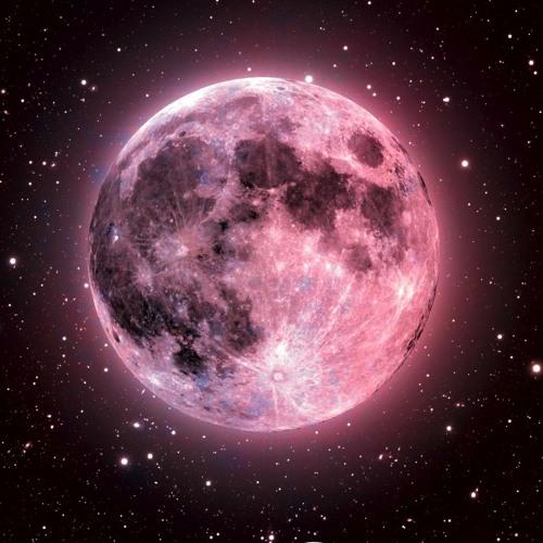 Moons's avatar