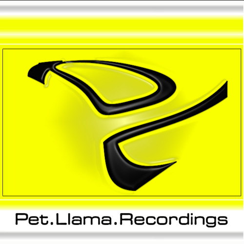 Pet.Llama.Recordings's avatar