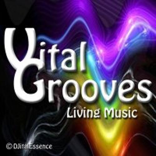 Vital Grooves Promo's's avatar