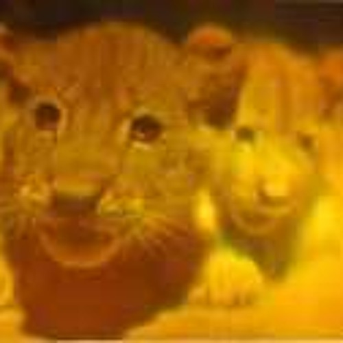 lion-san's avatar