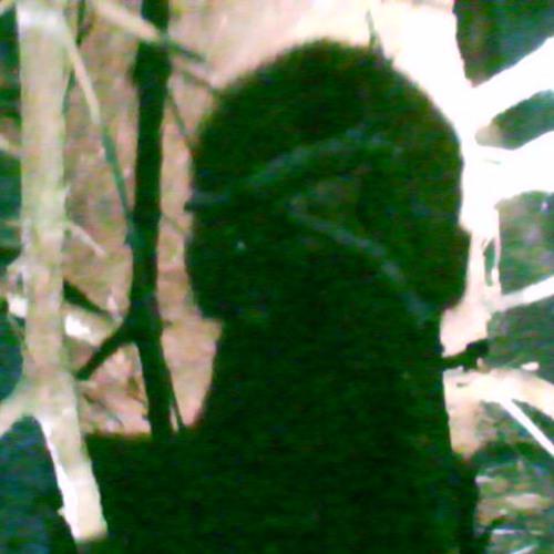 DJ SOMATIX's avatar