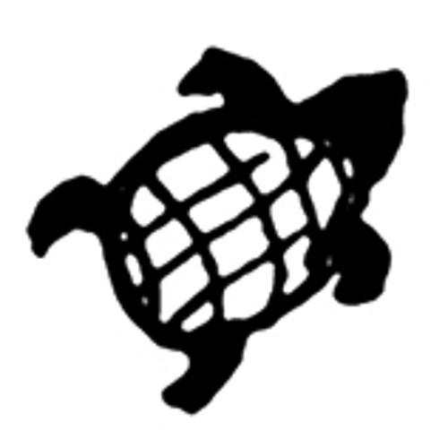 Tartaruga Records's avatar