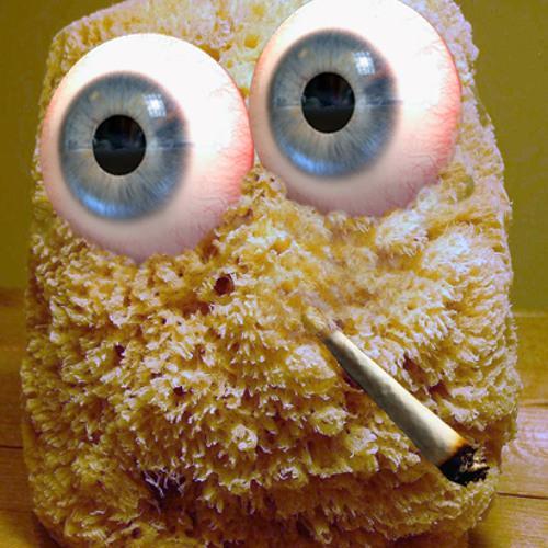 The Sponge's avatar