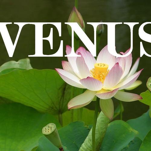 venusofficial's avatar