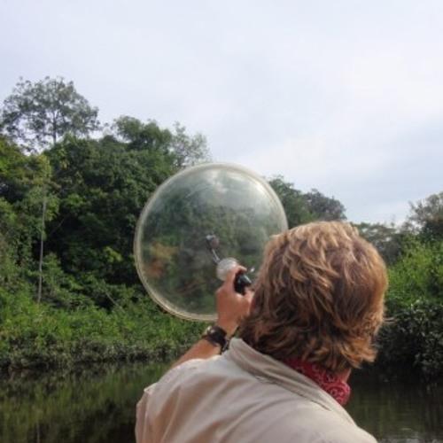 Sumatra, Indonesia - Gunung Leuser National Park