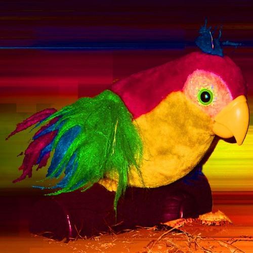 t.bird's avatar