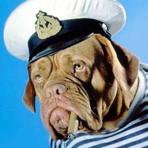 j hound's avatar