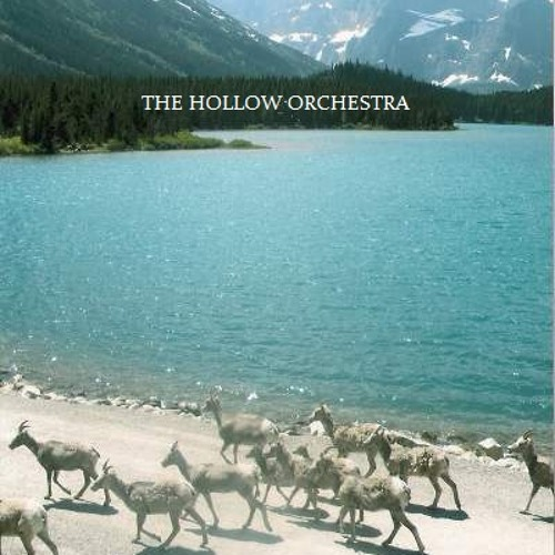 Theholloworchestra's avatar
