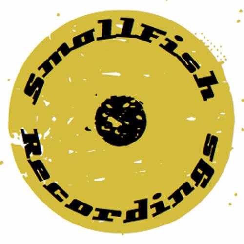 smallfishrecordings's avatar