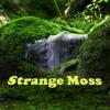 ariel-pinks-haunted-graffiti-flashback-strange-moss