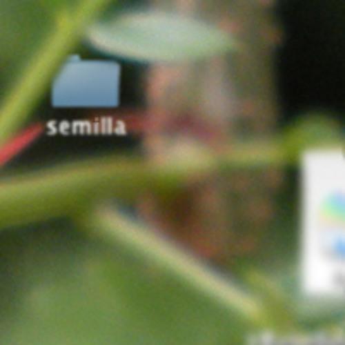 Semilla's avatar