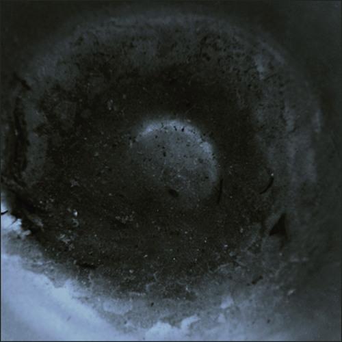 Absentia Industries's avatar