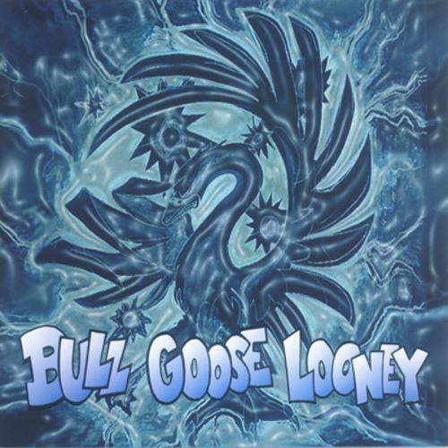 BullGooseLooney's avatar