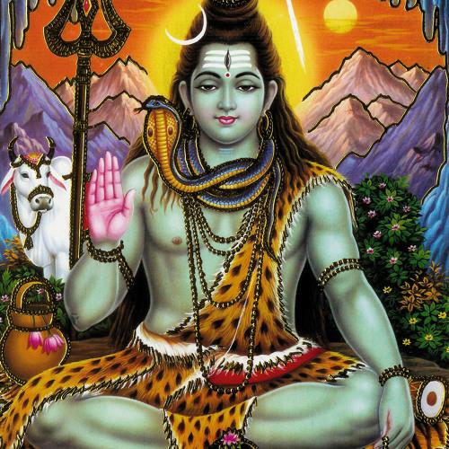 stef l'indien's avatar