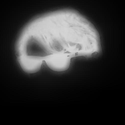 Caroil's avatar