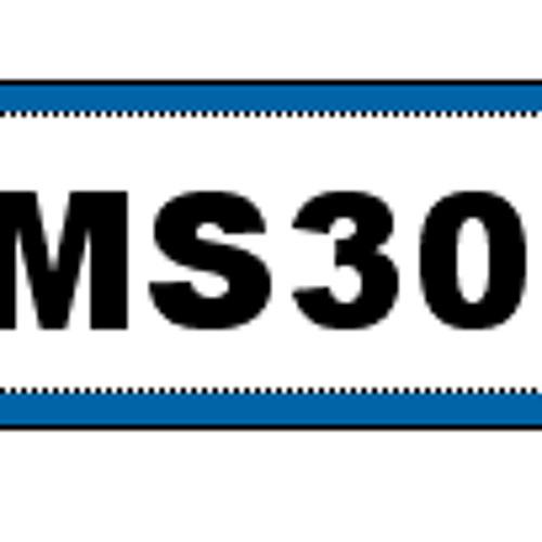 MS30's avatar