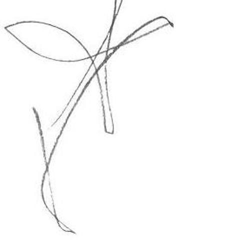 Honeycutt's avatar