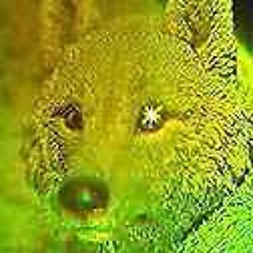 emmedimarco_hologram's avatar