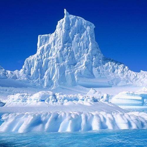 ant.Arctica's avatar