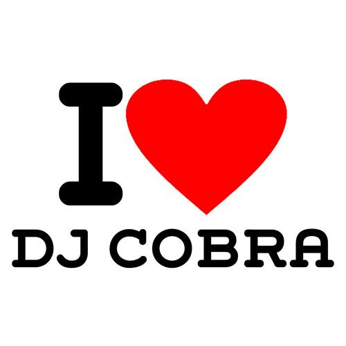 Sub Zero Poon - Dj Cobra - S and M Remix