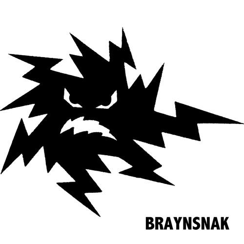 Braynsnak's avatar