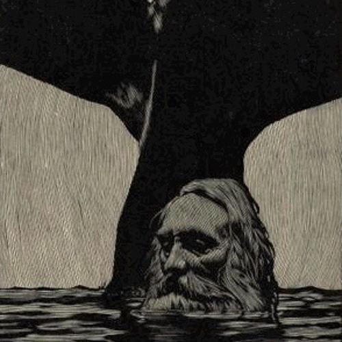 Oceaneers's avatar