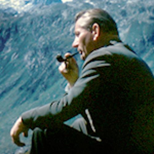 Tremolo Audio's avatar