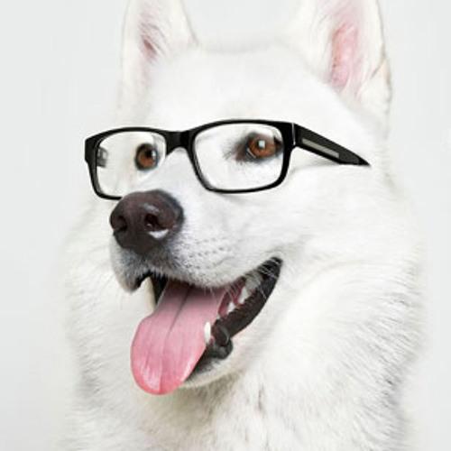 rolldrewgo's avatar