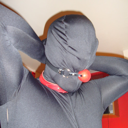 Gimpy's avatar
