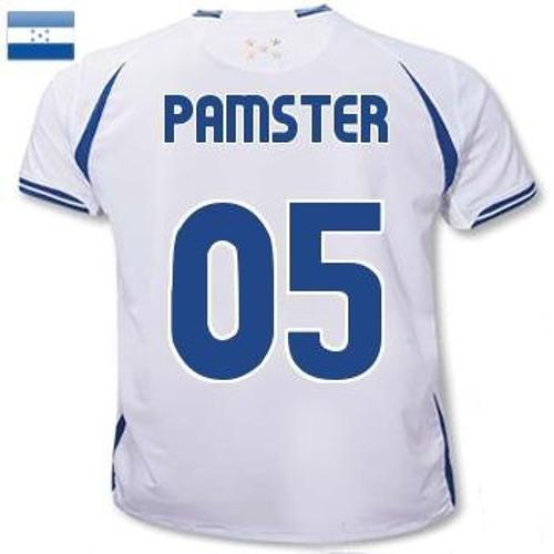 Pammyster's avatar