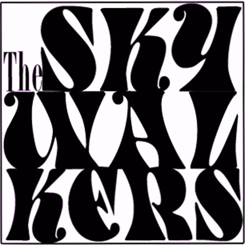the skywalkers's avatar